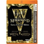 The Elder Scrolls III: Morrowind Game Of The Year Edition PC játékszoftver